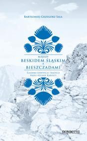 Między Beskidem Śląskim a Bieszczadami — Bartłomiej Grzegorz Sala