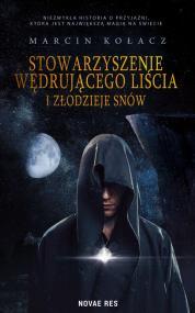 Stowarzyszenie wędrującego liścia i złodzieje snów — Marcin Kołacz